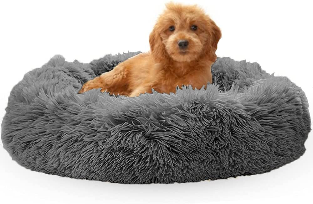OYANTEN Cat Beds for Indoor Dogs Small Challenge the lowest price of Japan ☆ Dog Cats Medium Our shop OFFers the best service