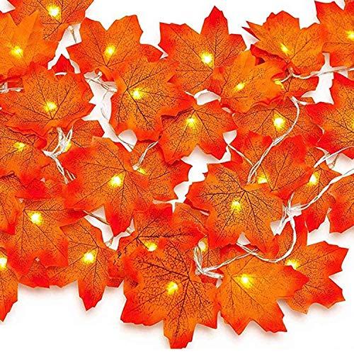 3m 30 Led Lichterkette Herbst, Herbst Dekoration, HerbstbläTter Deko, Ahornblatt Lichterketten für Türrahmen Landhaus Garten TreppengeläNder, Tischdeko Fensterdeko Erntedank Thanksgiving Halloween