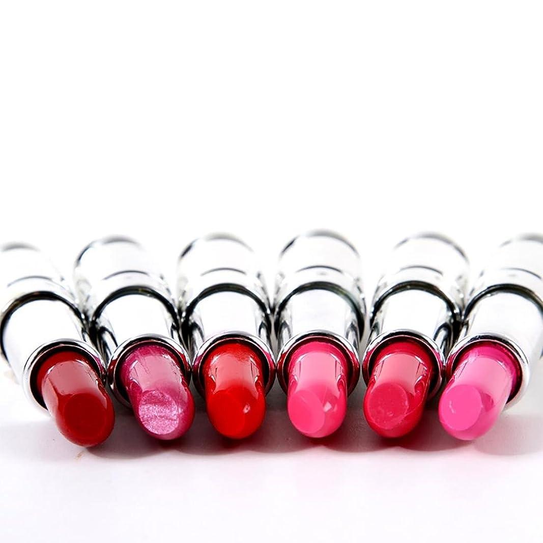 豊かにするファイバタンカーHomyl 6色 リップスティック 唇メイクアップ コスメ 防水 マット 口紅 リップ グロスセット 長持ち 仕上げ プレゼント