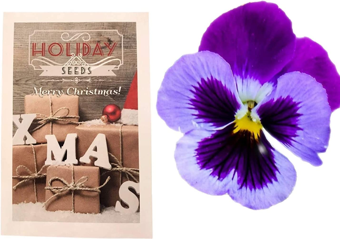 Cherry Pirouette Petunia Stocking Stuffers Holiday Seeds UPC 600188194760 Holiday Themed Seed Packets