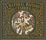 A Natural History of Fairies: From the Notebook of Professor Elsie Arbour