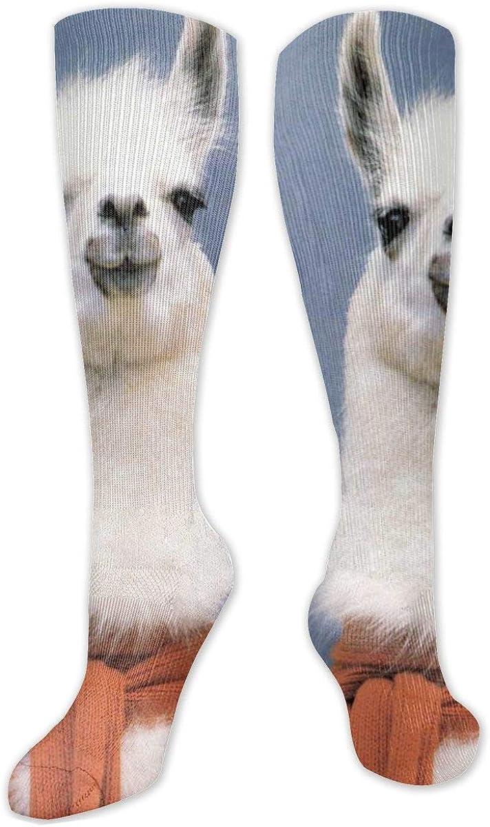 Alpaca Knee High Socks Leg Warmer Dresses Long Boot Stockings For Womens Cosplay Daily Wear