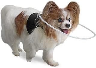 Walkin' Blind Dog Halo Harness/Vest for Pets Under 30lbs