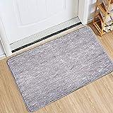 Indoor Doormat Front Door Mat Non Slip Rubber Backing Super Absorbent Mud and Snow Magic Inside Dirts Trapper Mats...