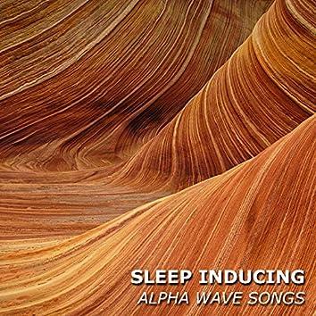 #20 Sleep Inducing Alpha Wave Songs