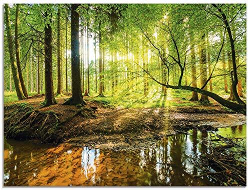 Artland Glasbilder Wandbild Glas Bild einteilig 80x60 cm Querformat Wald Natur Landschaft Bäume Bach Sonne Frühling T9IO