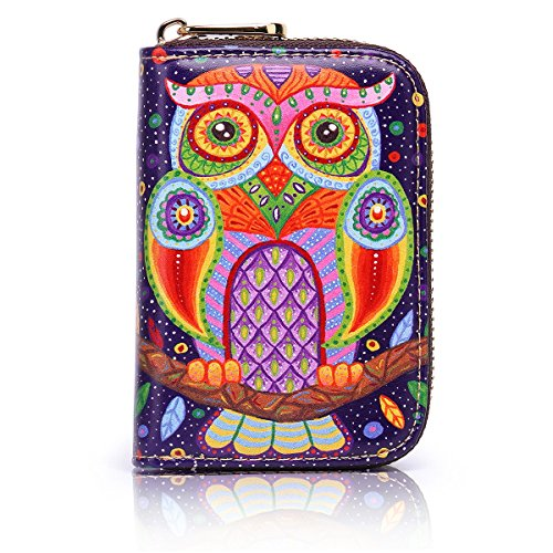 APHISON RFID Credit Card Holder Wallets for Women Leather Cartoon Patterns Zipper Card Case for Ladies Girls/Gift Box 006