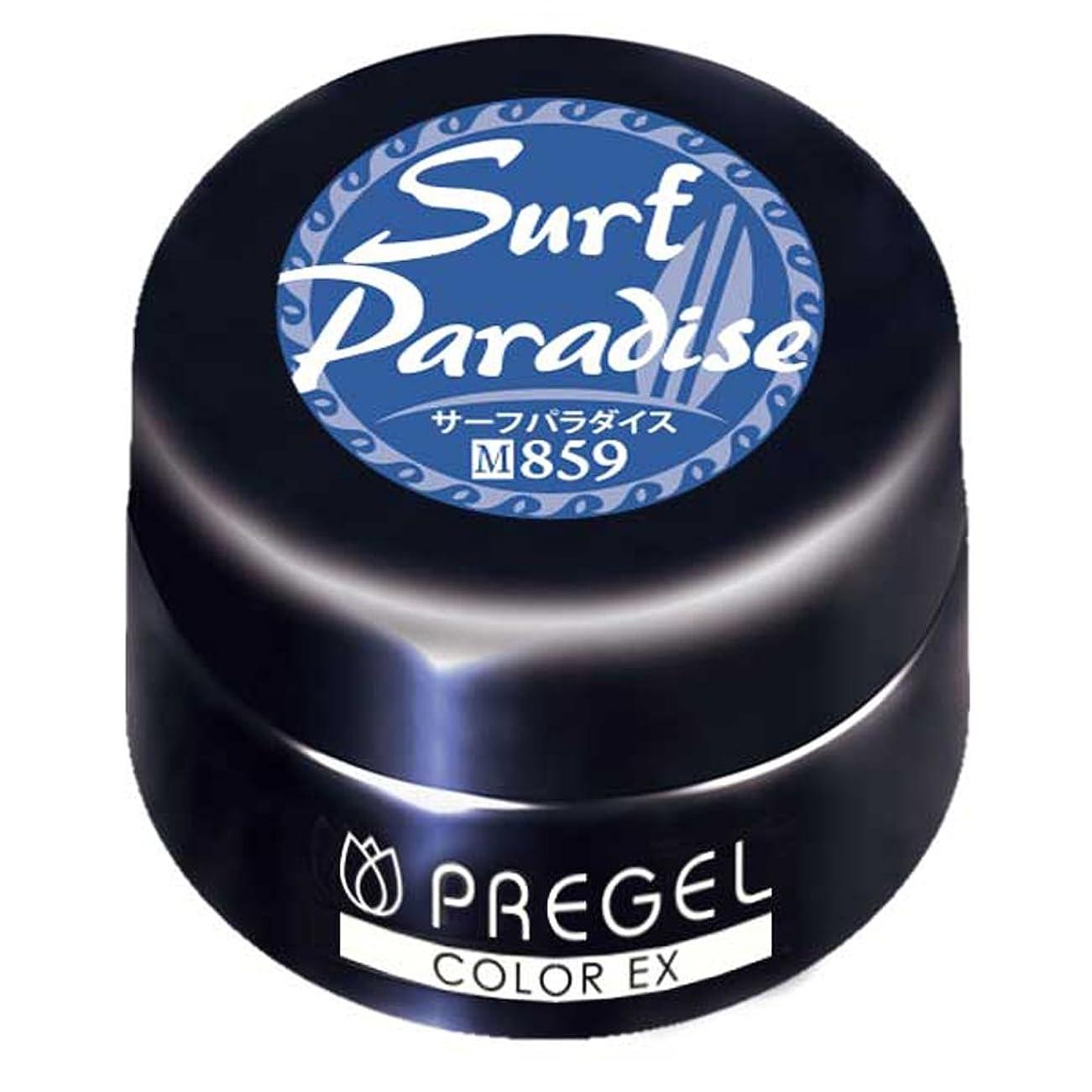 必要ないにやにやカップルPRE GEL カラーEX サーフパラダイス 859 3g UV/LED対応