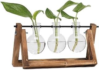 Hyindoor Vases Ampoule en Verre Vase Vintage avec Support en Bois et Métal Tige Rotatif pour Plantes Hydroponiques Pot de ...