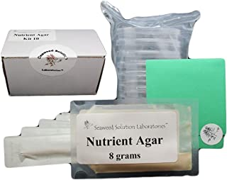 Nutrient Agar Kit, Includes Nutrient Agar Dehydrated, 10 Sterile Petri Dishes with Lids & 10 Sterile Cotton Swabs