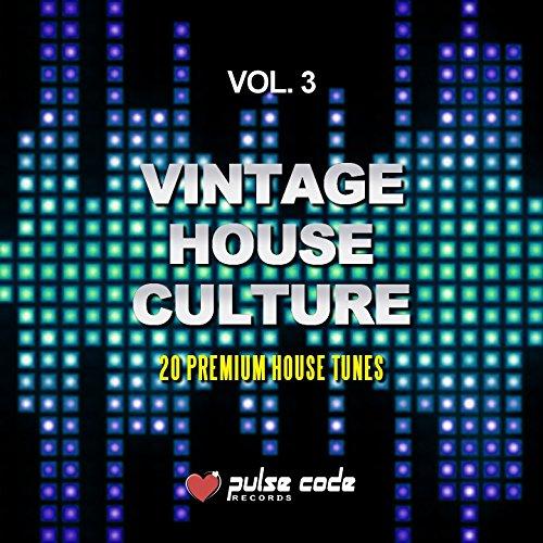 Vintage House Culture, Vol. 3 (20 Premium House Tunes)