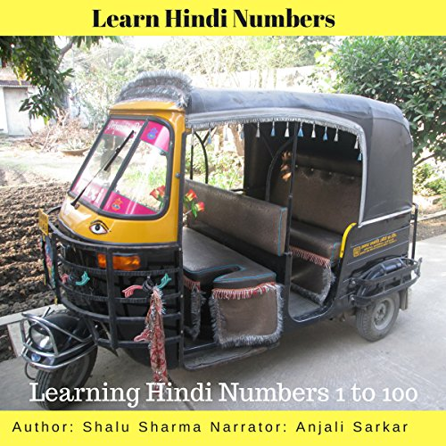 Learn Hindi Numbers audiobook cover art