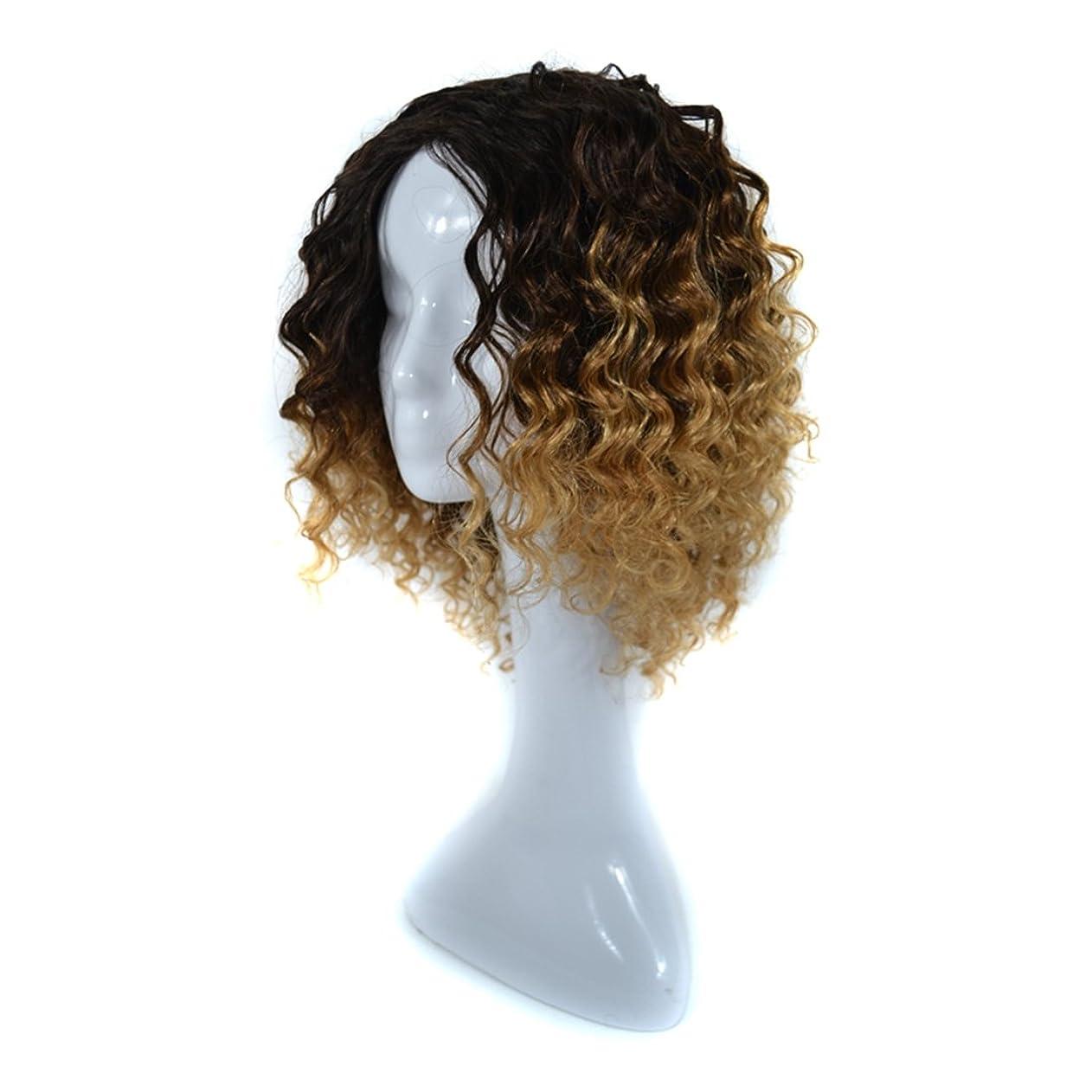 スケッチ野菜泥沼Koloeplf 300グラムリアルフルウィッグ女性のためのヨーロピアンとアメリカンブラックDEEPスモールボリュームカーリーウィッグリアルな自然な人間の髪のために中傷と合成のデイリーウィッグ (Color : Black Light Brown 1BT27#)