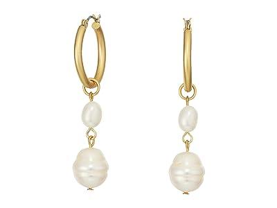 SOLE / SOCIETY Small Hoop Double Drop Pearl Earrings (12K Soft Polish Gold/Ivory Fresh Water Pearl) Earring