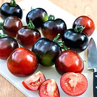 fabbfe06d401c Cioler Seed House - 50/100 Pieces Graines BIO de Tomates Cerises Viande  Graines BIO