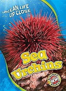 Sea Urchins (Blastoff! Readers, Level 3: Ocean Life Up Close)