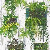 Papier peint plante verte | Papier peint végétal & bois blanc 30413-1 | Papier peint pas cher | Papier peint vert Lutèce pour salon & bureau