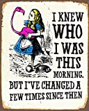 Alice in Wonderland I've Changed Metal Sign 6x8inches Plaque Vintage Retro Poster Art Picture Print