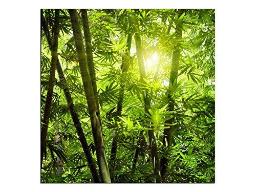 kunst-discounter A05547 - Quadro su Tela, Motivo: Bosco di bambù, Format 90 x 90 cm