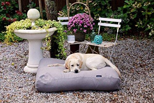 Dog's Companion® Hundebett grau polster large