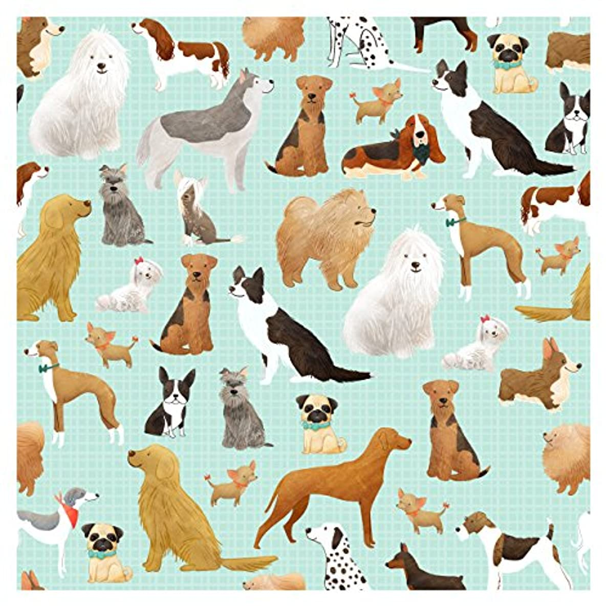 Jillson Roberts 6-Roll Count Premium Gift Wrap Available in 19 Different Designs, Best in Show