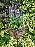 Blumenkorb aus Metall zum stecken - 100 cm - Gartenstecker