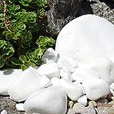 MGS SHOP Marmorkies Snow rein weiß schneeweisser Garten Kies 25 kg (40/80 mm) - 7