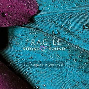 Fragile (feat. Arándano & Din Beats)