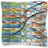 Pañuelo de bolsillo de poliéster con diseño de oveja y química atmosférica y mapa físico, cuadrado, mulipurpose de seda, impresión delicada