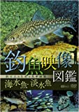 シンフォレストDVD 釣魚映像図鑑[海水魚・淡水魚]釣り人のための水中映像 image