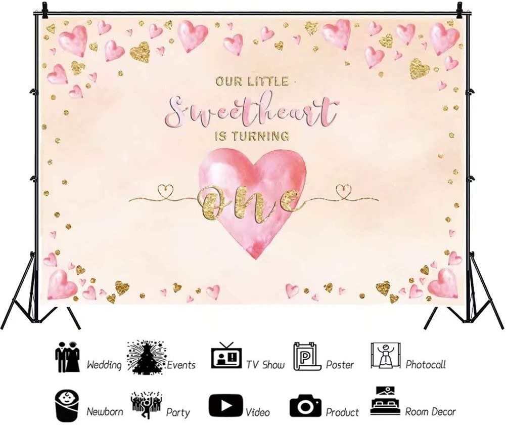DaShan 14x10ft Our Little Sweetheart is Turning One Backdrop Girls Pink Golden Love Heart Happy 1st Birthday Photography Background Sweetheart One Birthday Valentine Party Decor Photo Props