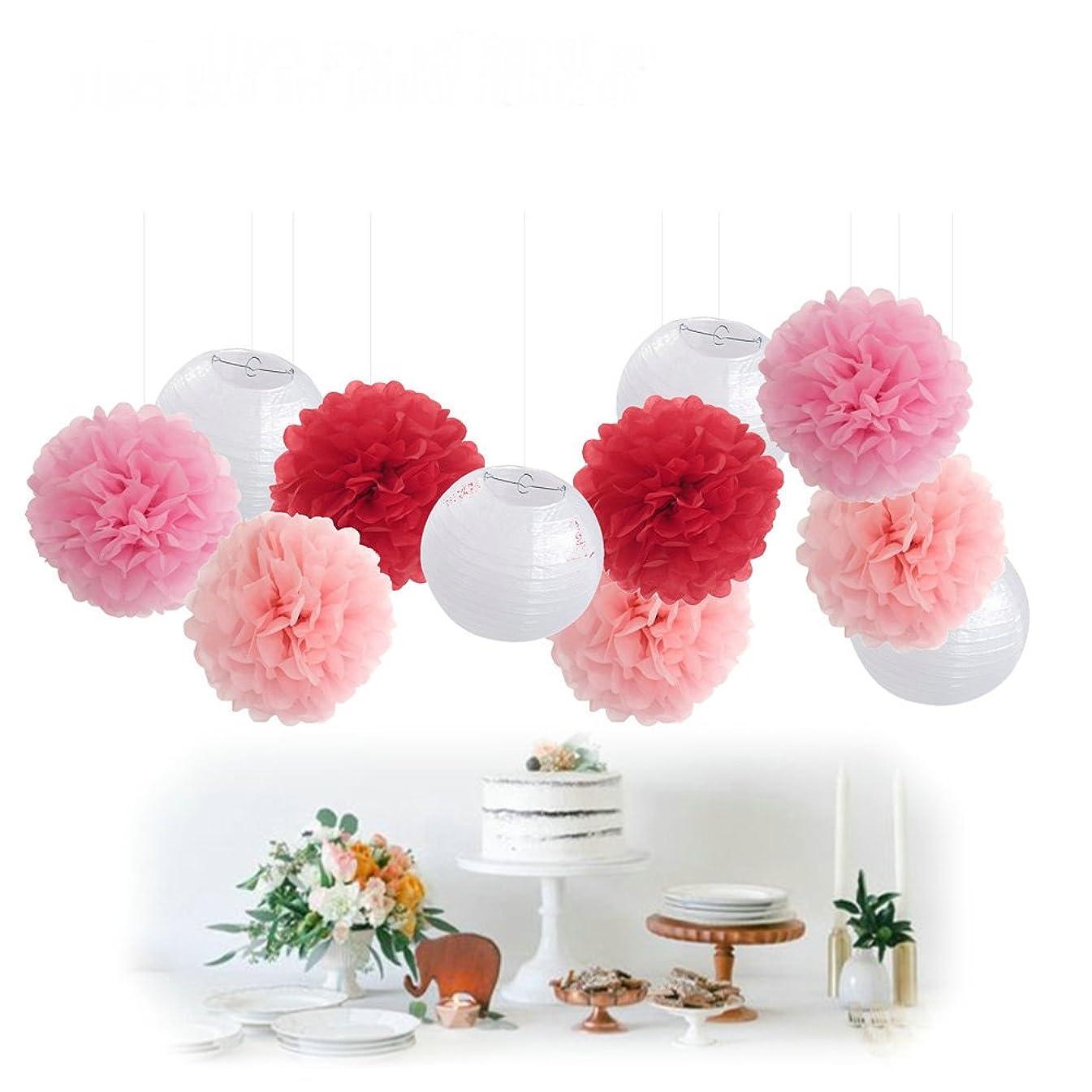 11pcs Mixed Pink White Decorative Paper Pompoms Flower Hanging Paper Lantern Honeycomb Balls Wedding Birthday Christening Girl Baby Shower Nursery Mobiles