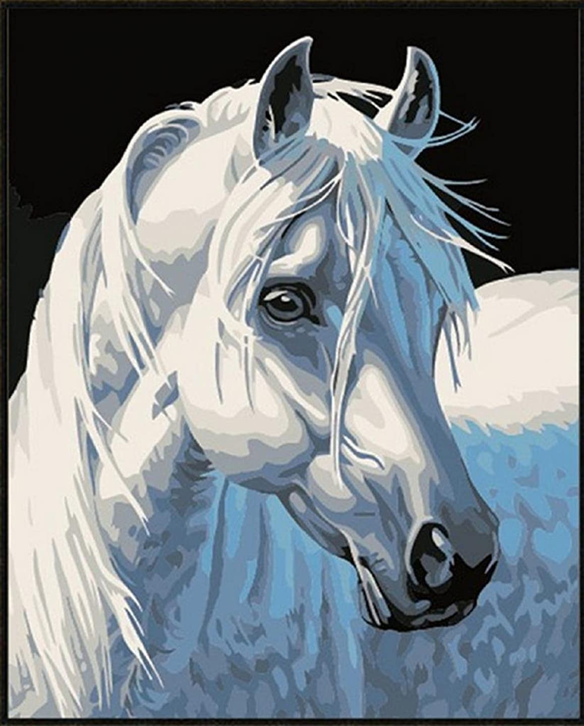 Colour Talk Diy oil painting, paint by number kit- White horse 1620 inch.