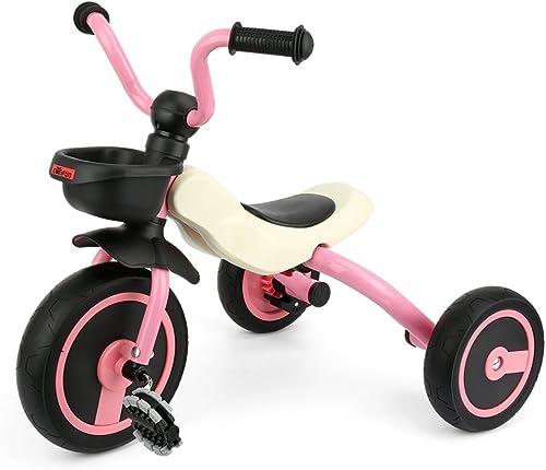 Fascol Gosfun Tricycle Bébé Evolutif Vélo 3 Roues pour Enfant 2 à 5 Ans Charge Maximale 25 kg (Rose)