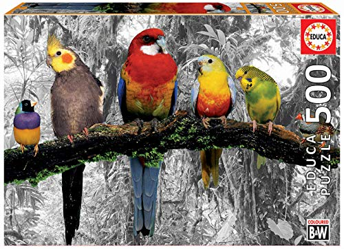 Educa Borrás-Serie Coloured B&W Puzzle 500 piezas, Pájaros en la jungla, color variado, 17984