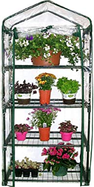 DesirePath 4 Tier Wider Portable Plant Mini Greenhouse Green House with Casters, for Growing Seeds, Seedlings, Tending Potted Plants, Garden Gardening Indoor Outdoor