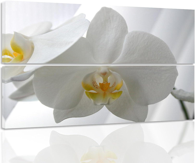 alta calidad general Feeby. Cuadro en lienzo - 2 partes - 100x70 cm cm cm - forma rectangular, Cuadros decoración, Imagen impresa en lienzo, ORQUíDEA, NATURALEZA, blancoO  perfecto