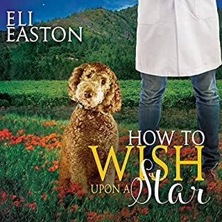How to Wish Upon a Star audiobook cover art