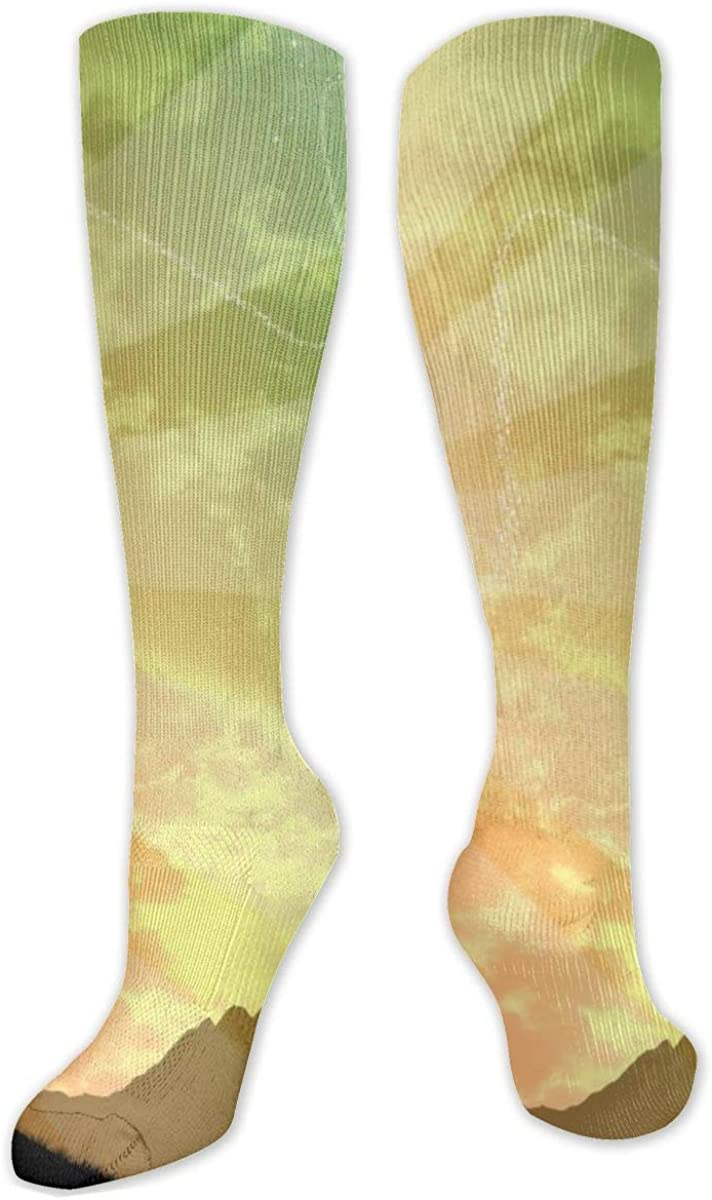 Skateboarder Silhouette Tree Knee High Socks Leg Warmer Dresses Long Boot Stockings For Womens Cosplay Daily Wear