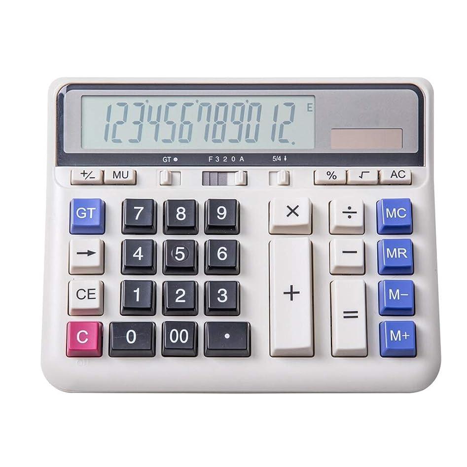 岩想定足首デスクトップ電卓 財政および銀行人員の白のための二重力コンピュータボタンの計算機12ビット大画面の横の計算機 正確な計算