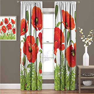 Ladybugs Decorations Collection Premium blackout curtains Horizontal Border with Poppy Flower Bud Poppies Chamomile Wildflowers Lawn Design Kindergarten noise reduction curtains W52 x L63 Inch Red Gr