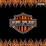 FlaMa (feat. Foyone, Akapellah, Trainer & Big Soto) [Explicit]