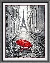 Paris in the rain cross stitch kits, 14ct, Egyptian cotton thread135x200stitch,35x47cm cross stitch kit
