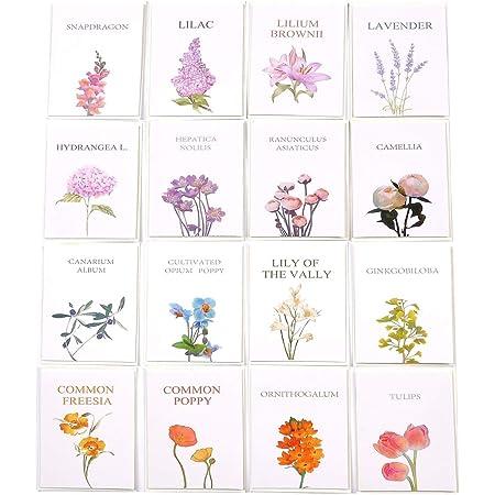 32 Set di biglietti d'auguri bianchi floreali con buste - Confezione multipla per tutte le occasioni Biglietti di compleanno Biglietti di ringraziamento (103)