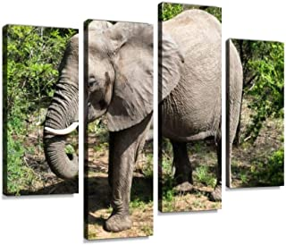 African Elephant Canvas Print Artwork Wall Art Pictures Framed Digital Print Abstract Painting Room Home Office Decor Read...