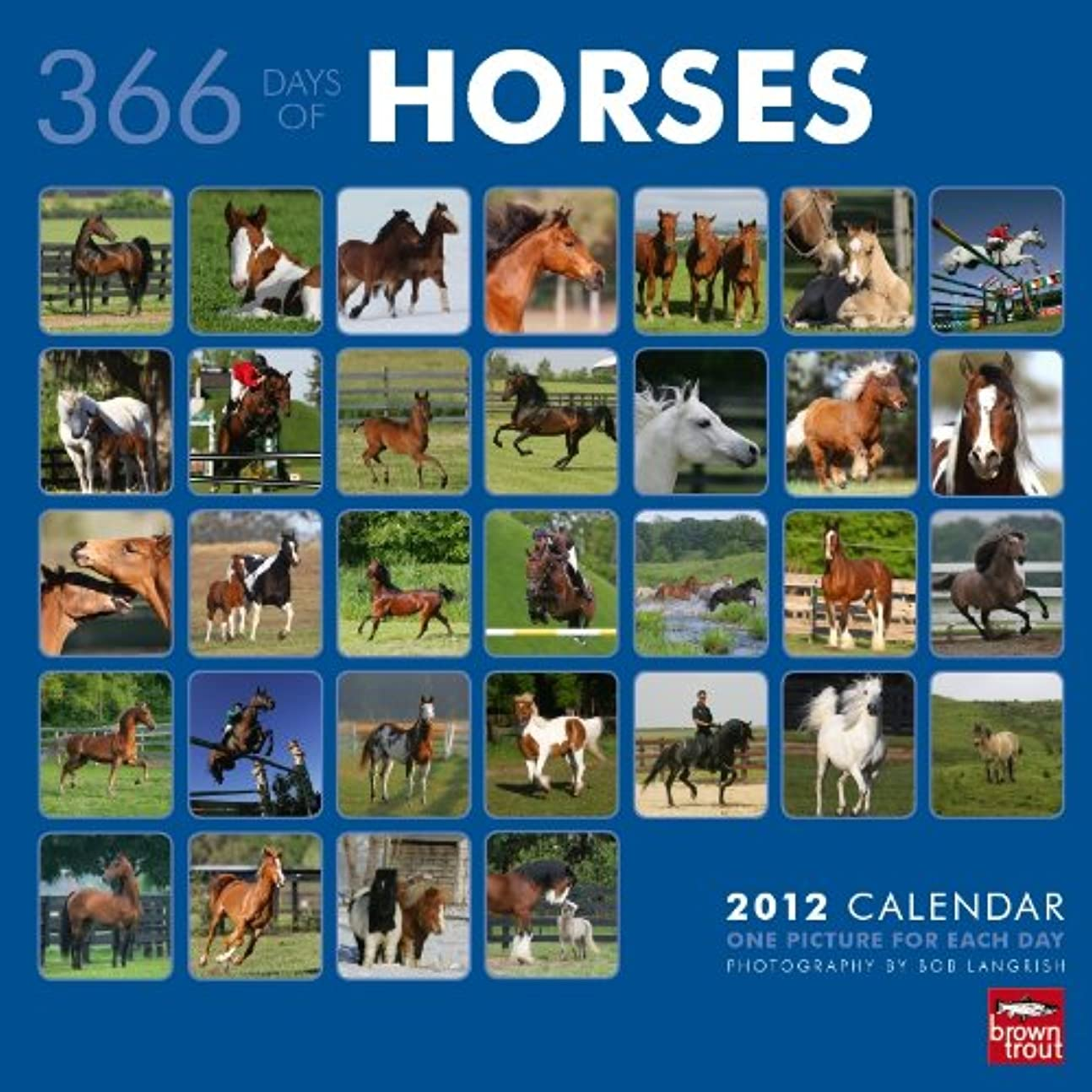 チョーク弱まる唯物論366 Days of Horses 2012 Calendar