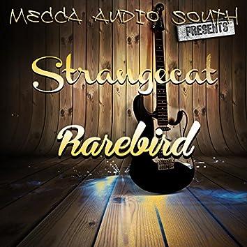 Strangecat Rarebird