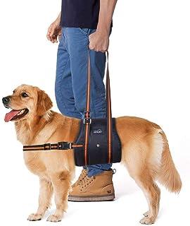 歩行補助, 2018年最新 PETBABA(ペットババ) 老犬介護用 歩行補助ハーネス 車や階段を乗る補助 関節炎 股関節/けがなど術後のリハビリ用 (L)