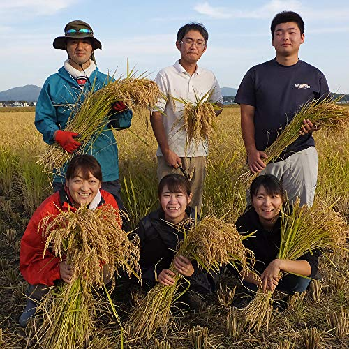 水菜土農園『水菜土農園の胚芽米』
