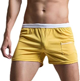 Men's Sports Shorts Cozy Quick Dry Underwear Boxer Briefs